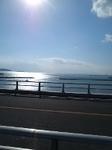 マリノ大橋.jpg